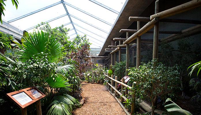 Sedgwick County Zoo Tropics Building, GLMV Architecture