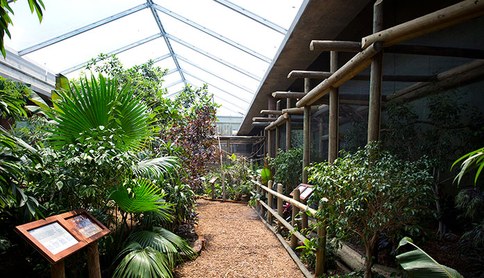 Sedgwick County Zoo Tropics Building, GLMV Architecture