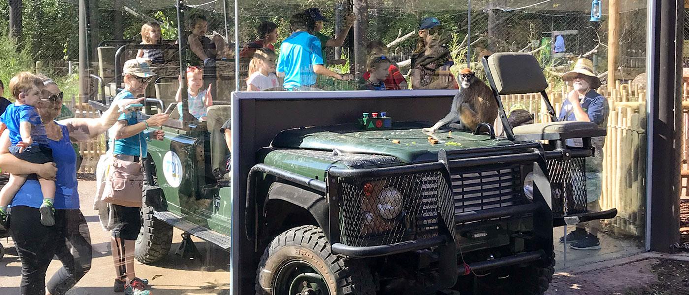 Camp Cowabunga – Zoo