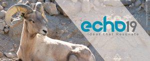 ECHO-19-GLMV-Zoo-Design